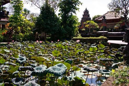Ubud Water Palace